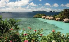 Wanderlust getaway ♥ Papua Indonesia Diving Misool Eco Resort, Raja Ampat. Scuba dive the world's richest reefs at our private island resort.