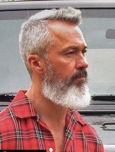 Beard Fade, Beard Look, Thick Beard, Men Beard, Grey Hair Looks, Men With Grey Hair, Older Mens Hairstyles, Haircuts For Men, Beard Styles For Men