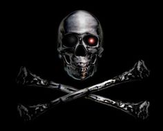 Andrew P. Weston: Terminate All Piracy  But not until you've run a s...