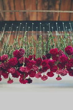 Cheap wedding decor idea! Carnations are an easy flower to experiment with. In this example, upside down flowers from plexi glass, suspended from the ceiling #weddingdress