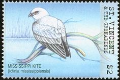 Mississippi Kite stamps - mainly images - gallery format