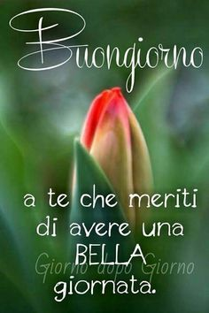 Good Morning Good Night, Day For Night, Good Day Quotes, Quote Of The Day, Short Messages, Italian Quotes, Italian Language, Emoticon, Good Mood