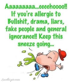 keep this sneeze going funny quotes quote lol funny quote funny quotes ignorance humor liars fake people