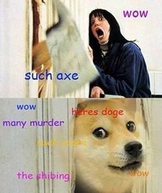 46 best much wow such doge very shibe images on pinterest funny the shibing the shining doge meme such axe many murder solutioingenieria Choice Image