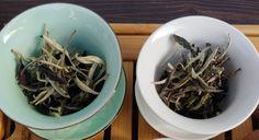 Moonlight Grade Compared to White Peony - Tea Time, Me Time White Peony Tea, White Peonies, Types Of Tea, Me Time, Grade 1, Moonlight, Ethnic Recipes, Food, Tea Types