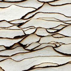 Wood Texture Design Ideas For Your Feature Home – Inbound Marketing Summit – Decor Trend 2020 Textile Texture, Wood Texture, Texture Design, Visual Texture, White Texture, Paper Texture, Patterns In Nature, Textures Patterns, Color Patterns