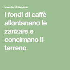 I fondi di caffè allontanano le zanzare e concimano il terreno Lava, Summer, Ideas, Lawn And Garden, Summer Time, Pallet, Thoughts