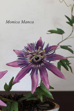 Passion flower gumpaste