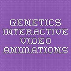 Genetics Interactive Video Animations