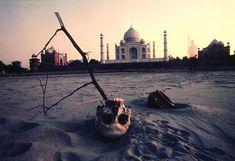 The Beauty of Taj Mahal from various Photographers - 121Clicks.com