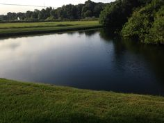 Keep your pond and lakefront beautiful with one of our aquatic weed control maintenance programs.  Sign up for one and receive a FREE intital treatment of your waterway.  Call 407-878-6655 for more details.
