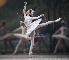 National Ballet of Canada, Nutcracker, Dance of the snow queen - my favourite costumes from this ballet.