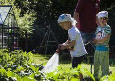Spielerisch lernen was man isst und was es braucht. Alle Infos zum Familotel Borchard's Rookhus gibt es hier: http://kinderhotel.info/kinderhotel/familotel-borchard-s-rookhus