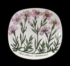 Offer: ESTERI TOMULA PLATE Dianthus deltoides FLOWER WALL 80s Arabia Finland | eBay