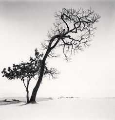 Michael Kenna,  Chilly Weather, Kussharo Lake, Hokkaido, Japan. 2013