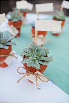 These succulent favors are both romantic and eco-friendly! Photo on Wedding Chicks