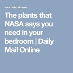 The plants that NASA says you need in your bedroom | Daily Mail Online