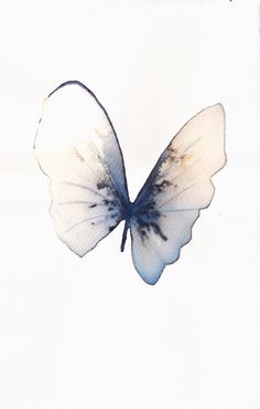 pale blue grey and white gold butterfly original watercolour and ink painting. £35.00, via Etsy.