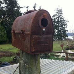 Rusty lunchbox turned into birdhouse