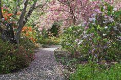 Ilam Gardens, Canterbury University.