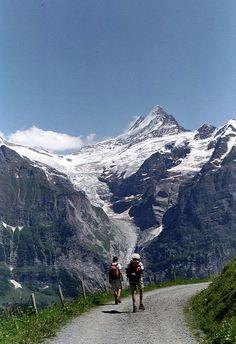 Grinderwaldgletscher with Schreckhorn, BE Switzerland