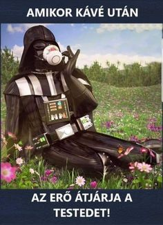 When Darth Vader vacations in Star Wars' galaxy far, far away humor, funny quotes Star Wars Prints, Star Wars Art, Funny Meme Pictures, Funny Memes, Take My Money, Star Wars Humor, Wallpaper Pictures, Star Wars Characters, Free Prints