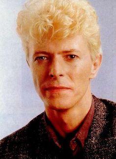 David Bowies OAP bus pass. : Photo