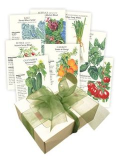 container veggie seeds