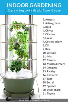 "When ""Something's Growing in the Kitchen"" Isn't a Bad Thing. Magalilegault.towergarden.ca"