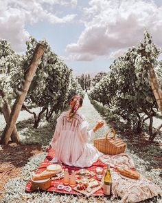 Dreamy picnic in the vineyard ☁️💫 In love with this picnic view and spread 🍓🍰🥖🧀🍴 Where is your favourite place to have a picnic? Adventure Awaits, Beautiful Day, Wilderness, The Hamptons, Monument Valley, Vineyard, Things To Come, Places, Nature