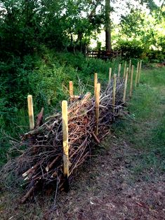 Deadwood Hedge sounds so negative. Insects of Best Garden Images Deadwood Hedge Herb Garden Design, Garden Types, Garden Art, Garden Planters, Garden Fences, Fall Planters, Garden Table, Backyard Landscaping, Landscaping Ideas