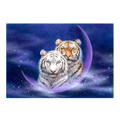 http://www.kayomiharai.com/tigers.html