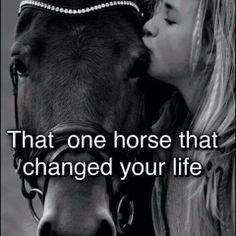In all honesty? It was an old appaloosa gelding named Spotty, we had such a bond, him and I, he was the horse of my childhood and he wasn't even mine lol then I met Lakota, my riding instructors horse and the pinto gelding changed my life, teaching me how to ride, and then when I was ready, we picked up my Jax, and now I can honestly say that he has,changed my life, helping through my depression, he is such a great colt