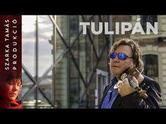 Szarka Tamás – Tulipán (2017) - YouTube Mirrored Sunglasses, Mens Sunglasses, Youtube, Fashion, Musica, Moda, Fashion Styles, Men's Sunglasses, Fashion Illustrations