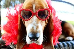 Charlie Outtakes by Ree Drummond / The Pioneer Woman, via Flickr