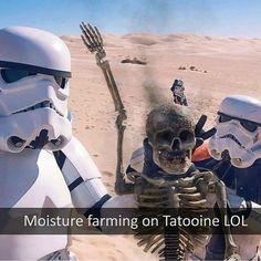 Stormtrooper selfie at work..