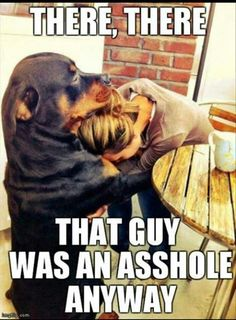 And this is why we all need a rottweiler