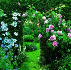 Gartentipps: Wer Kann Gut Mit Wem Im Beet?