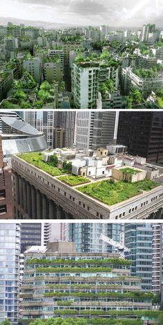 Telhado Verde - uma ideia simples que muda o meio ambiente de uma cidade inteira.