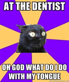 """anxiety cat I thought I was the only one! And one time they said """"oh, you have one of THOSE tongues!"""" gah! what does that mean? I was to shocked to ask."""