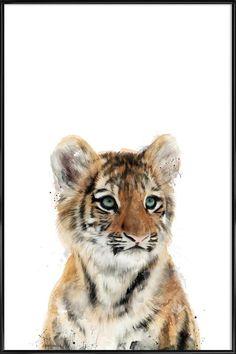 Little Tiger en Affiche sous cadre standard par Amy Hamilton   JUNIQE