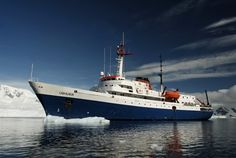 The small cruise ship Ushuaia is an ice-strengthened vessel that provides an intimate setting for your Antarctica expedition. Antarctica Cruise, Cruise Offers, Wale, Ushuaia, Shore Excursions, Whale Watching, Kayaking, Adventure, Classic