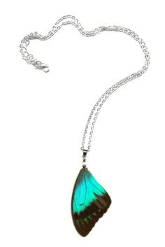 """Resin Coated Real Butterfly Wing necklace / pendant """"Papilio Lorquinianus"""" Free Shipping Worldwide Real Butterfly Necklace on Etsy, $39.50"""