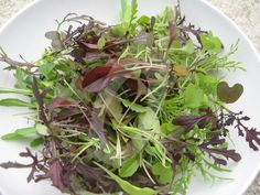 Easy & quick homegrown fresh babyleaf salad! Must sow some more!
