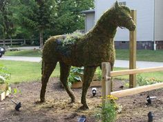 Topiary Life-Size Horse