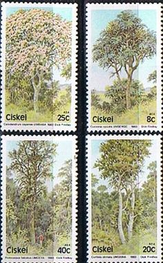 Ciskei 1983 Trees Set Fine Mint SG 34 7 Scott 47 9 Condition Fine MNH Only one post charge applied on multipule purchases Details Quality British Countries Around The World, Around The Worlds, Stamp Dealers, Stamp Collecting, Botany, Postage Stamps, Perennials, South Africa, Flora