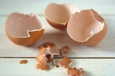 How To Start Seeds In Eggshells ~ An Easy Step by Step Approach - Whole Lifestyle Nutrition Egg Recipes, Snack Recipes, Godly Play, Organic Compost, Egg Shells, Home Remedies, Easy Crafts, Serving Bowls, Decorative Bowls