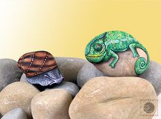 Painted rock critters by Ernestina Gallina via Flickr