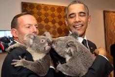 President Obama cuddling with a koala