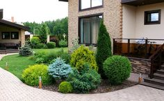 Side yard landscaping design